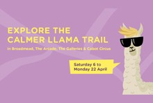 Calmer Llama Easter Trail