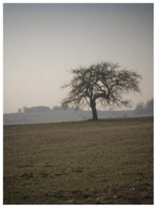 01|02|2012 – Weitblick