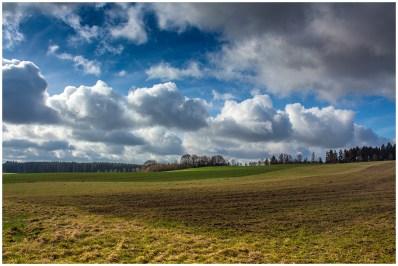 23|03|2014 – Auf dem Feld bei Langenhahn