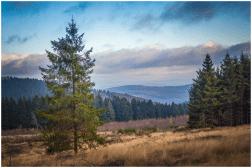 08|11|2014 – Hellerhöhenweg bei Burbach-Lippe