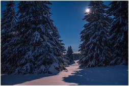 Februar: Vollmondnacht auf der Fuchskaute