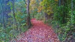 Park Trail