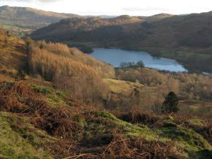 alcock-tarn-walk-grasmere-january-sunset-004