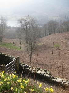 Grasmere cottage view of Rydal water