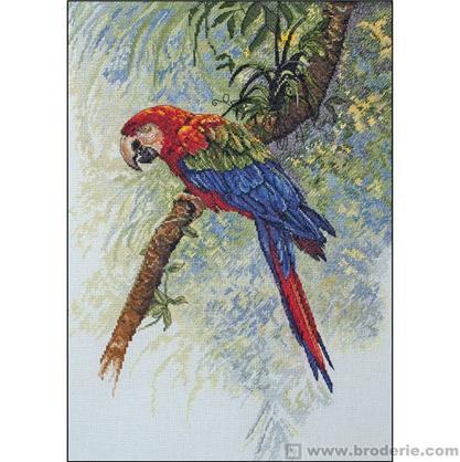 perroquet point de croix
