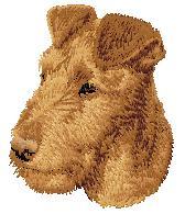 Hundbrodyr Irländsk terrier valp