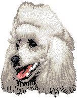 Hundbrodyr Pudel vit
