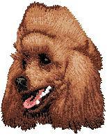 Hundbrodyr Pudel brun