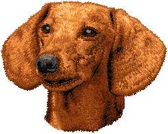 Hundbrodyr Tax släthårig