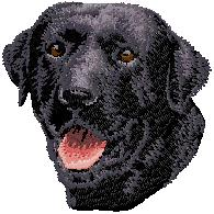 Hundbrodyr Labrador reteriever svart