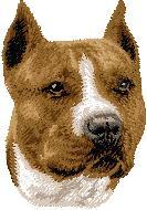 Hundbrodyr amerikansk staffordshireterrier