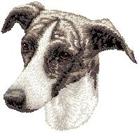 Hundbrodyr Greyhound