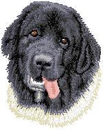 Hundbrodyr Landseer