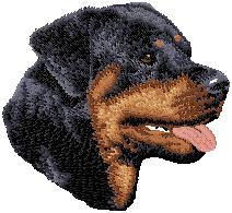 Hundbrodyr Rottweiler