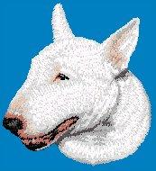 Hundbrodyr Bullterrier vit
