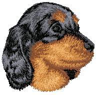 Hundbrodyr Tax valp