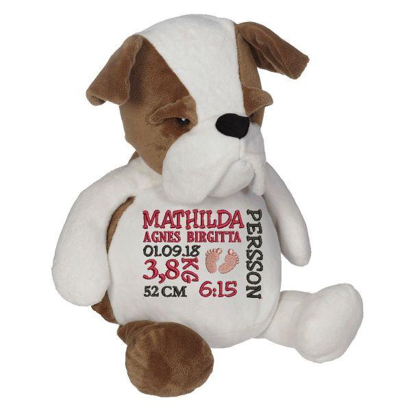 En härlig bulldog som heter Buster, med plats för en stor personlig brodyr på magen.