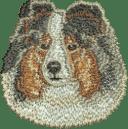 Brodyr Shetland Sheepdog bluemerle