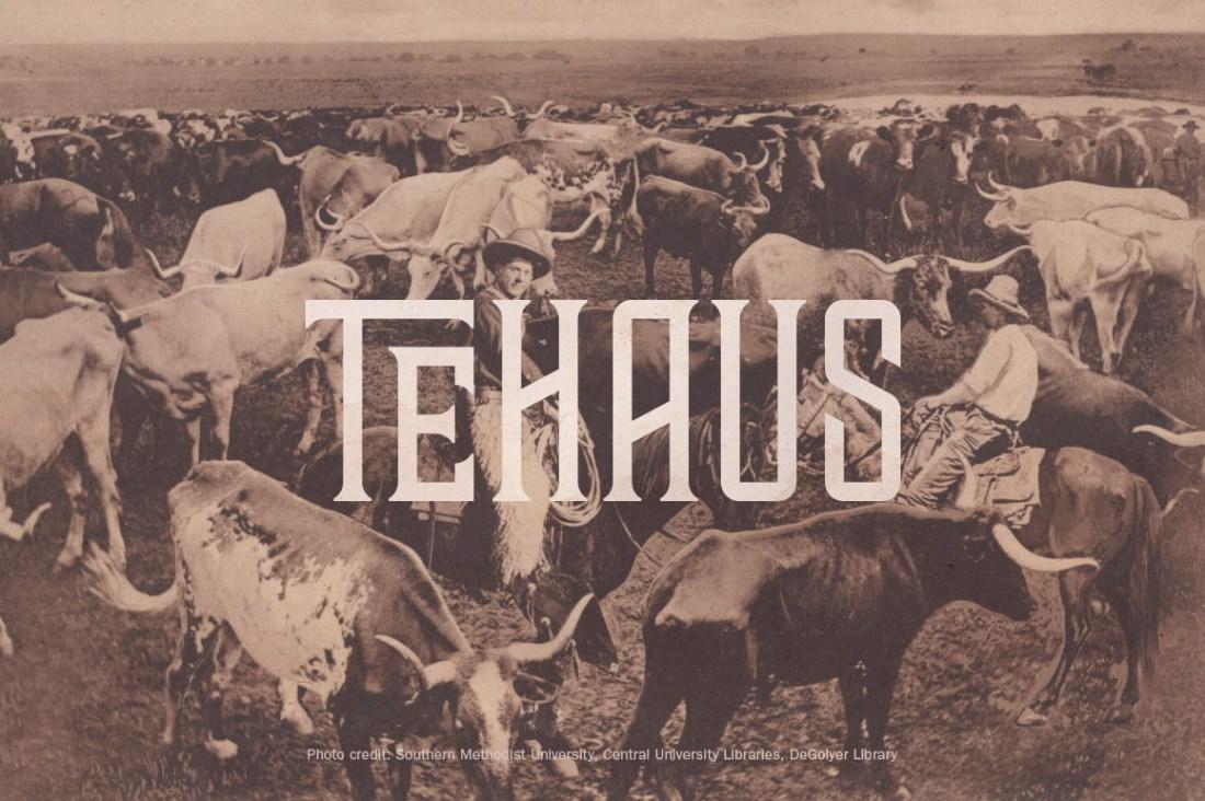 Tehaus Typeface
