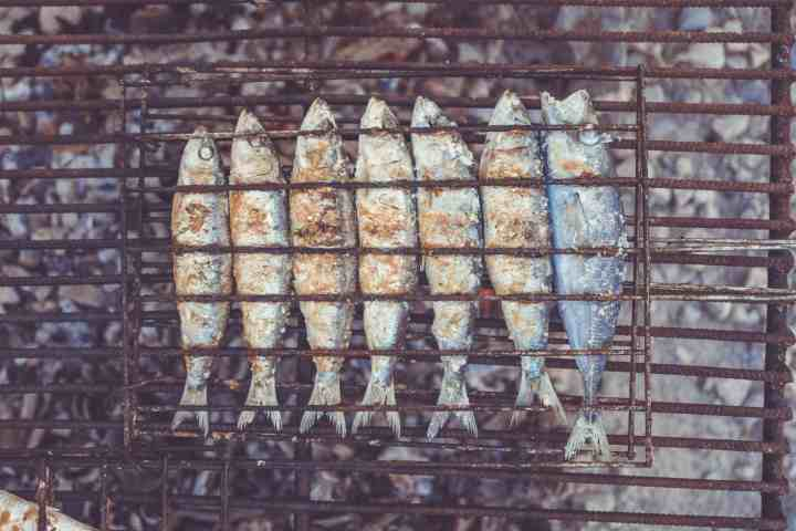 Sardines on the Grill | Photo by Lukas Budimaier on Unsplash