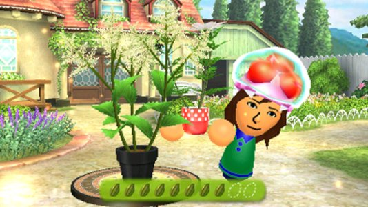 Streetpass Flower Town