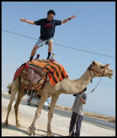 Hanging ten, on a camel...
