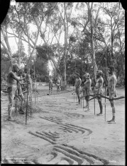 Wailwan men engaged in ceremonial activity, 1898, Quambone Station. Image: 'Aboriginal Bora, Arrival of the King'. Photo published by Charles Kerry & Co. Powerhouse Museum Tyrrell Collection.