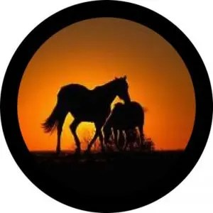 Sunset Horses Tire Cover