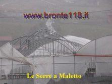 malt10032012 17