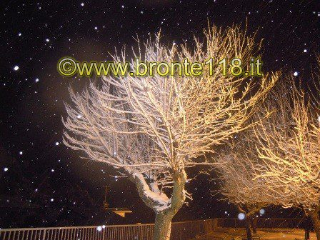 watermarked-ANEVE06012012 (10)