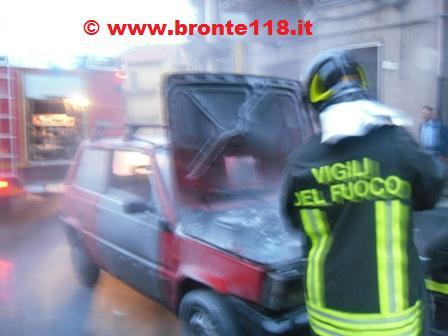 panda 14aprile2010 1