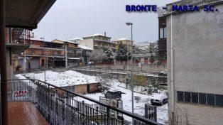 2017watermarked-bronte-maria-s