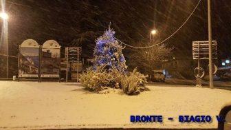 2017watermarked-bronte-7-biagio-v