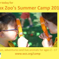 Register Today for Bronx Zoo Summer Camp