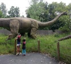 Visiting Fieldstation Dinosaur