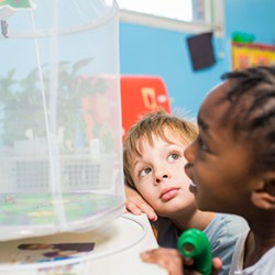 Pre-K Application Period Begins January 25th