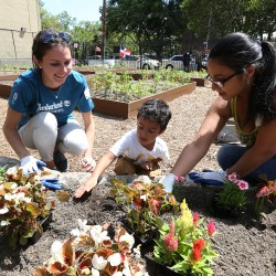 Timberland Helps Restore Community Garden in the Bronx