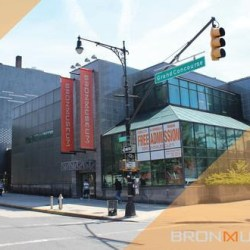 Share New Ideas For Renovation at the Bronx Museum of the Arts