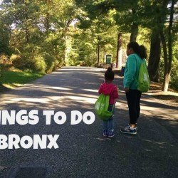 100 Things To Do in the Bronx in 2017