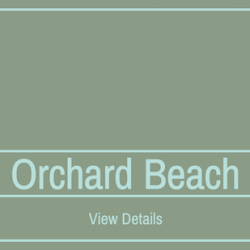 Drive-In Movies Coming to Orchard Beach