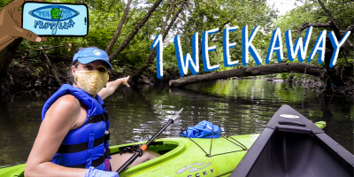 Join the First Ever Virtual Bronx River Flotilla