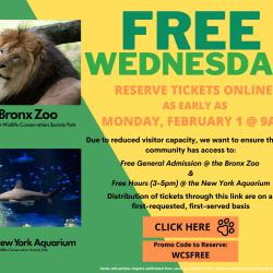 Free Wednesday at the Bronx Zoo- Early Ticket Access for Bronxites