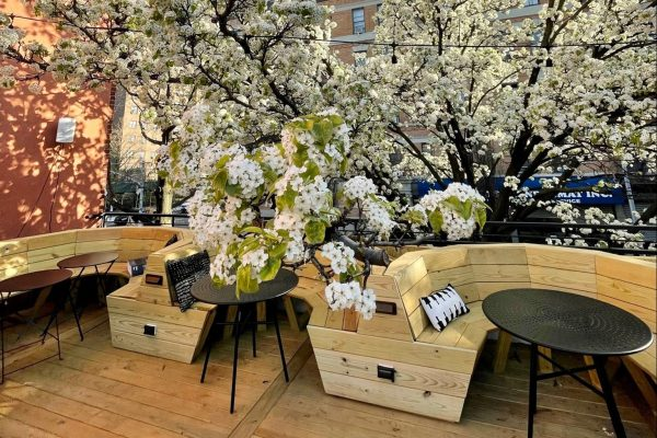 10 Ways to Celebrate Mother's Day in The Bronx
