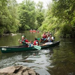 Bronx River Alliance Launches New Website