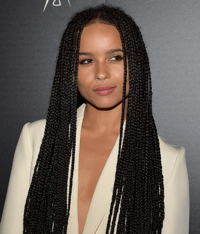 protective hairstyle box braids