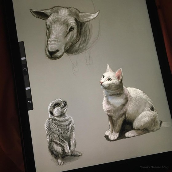 Sketch-a-Day quick sketch studies of animals (based on own photo refs) on the iPad Pro using Procreate app
