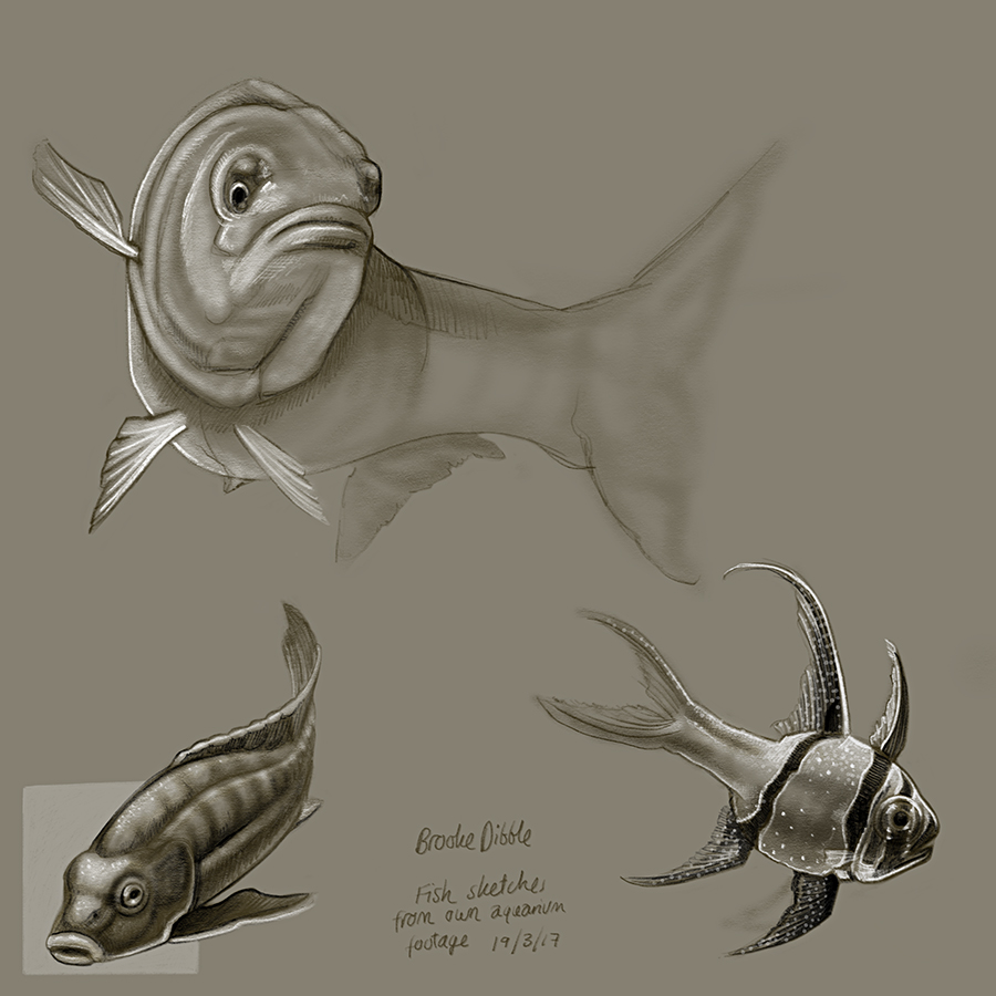 Fish and reptile sketches