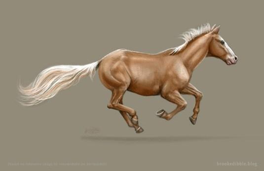 Horse Sketch 3/4/17