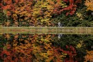 A woman pushes a baby stroller around Dream Lake amid fall foliage.
