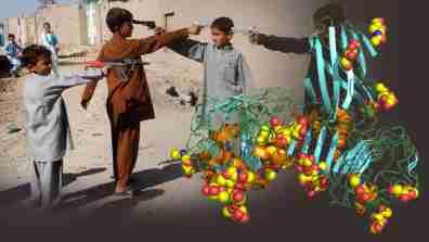 afghanproteindark